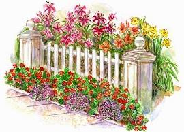 бордюры и оргаждения для цветника